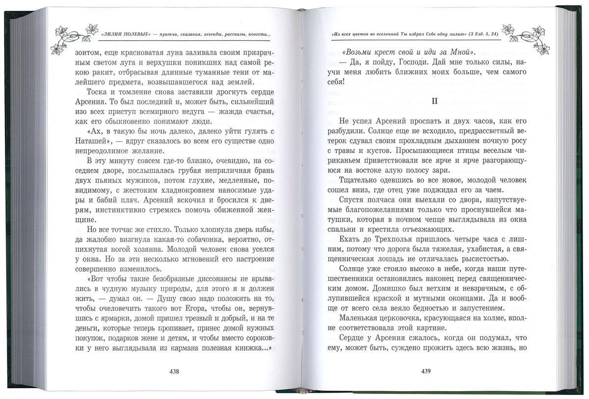 Лилии полевые книга скачать текст бесплатно